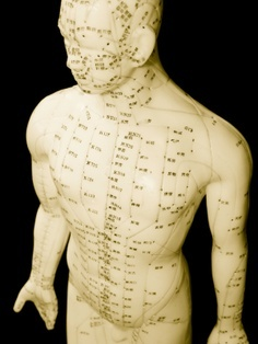 What is Acupuncture | Meridian man doll